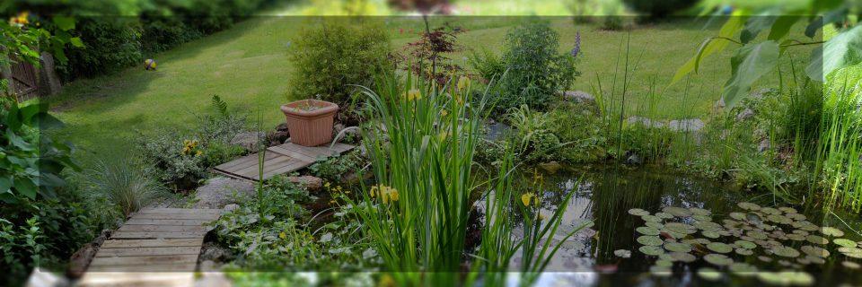 Neu- und Umgestaltung von Gartenanlagen